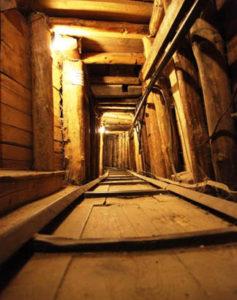 rat-tunel